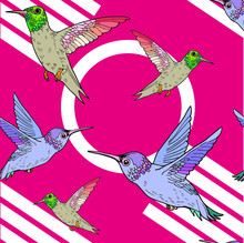 Graphic Seamless Pattern With Hummingbirds On A Bright Background. Vector File With Birds For Design Fabric Or Book Cover.