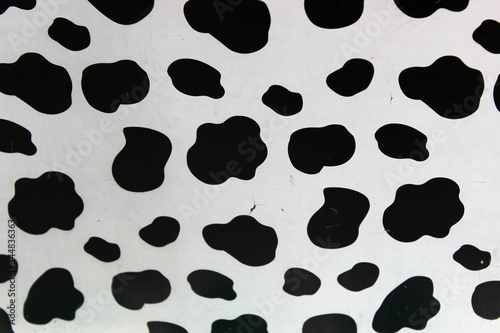 Fototapeta Estampado de piel de vaca  obraz