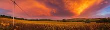 Breathtaking Summer Sunset Ove...