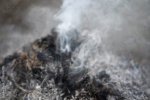 Fotografie, Tablou Smoke from an extinct fire
