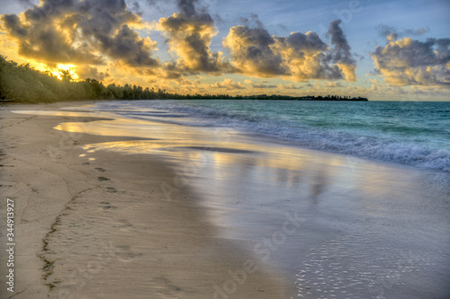 Photo foot steps on the Exotic Antilles beach with palm tree in the Martinique at sunr