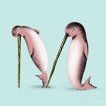 Narwhals - M