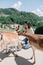 Young Woman And Deers