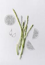 Fresh Wild Asparagus
