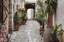 A Street In An Old Southern Ci...