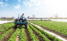 Farmer On A Tractor Loosens Co...