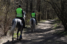 Mounted Police On Beautiful White Horses Patrol The Park