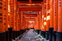Walkway Under Orange Wooden Pi...