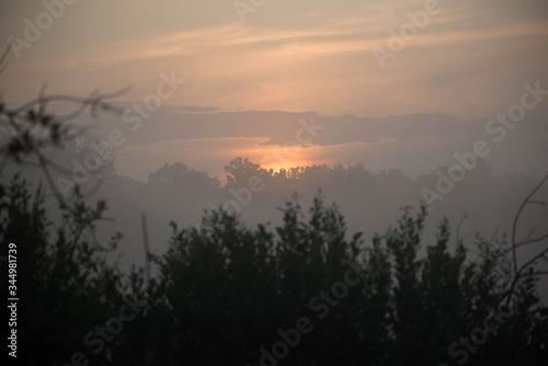 Fototapeta Wschód słońca na skraju lasu obraz