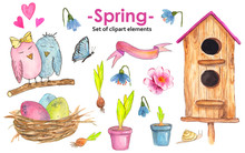 Watercolor Hand-drawn Spring S...