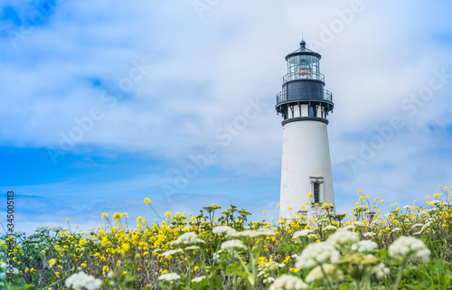 lighthouse on the coast of the sea Canvas Print