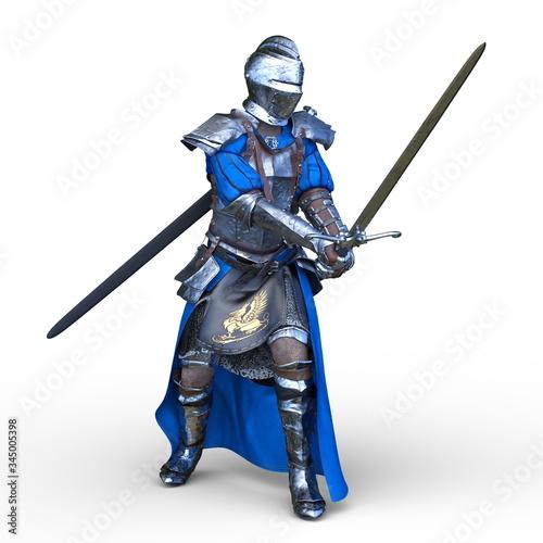 фотография 甲冑の戦士