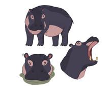 Cartoon Illustration Of Hippo ...