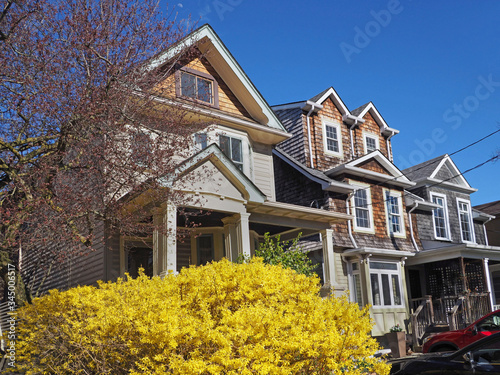 Street of middle class two story homes with bright yellow forsythia bush in bloo Wallpaper Mural