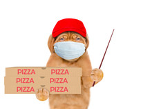 Pizza Delivery Dog Wearing Medical Protective Mask And Red Cap Holds Pizza Boxes And Points Away On Empty Space. Isolated On White Background