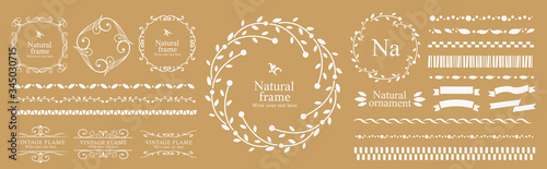 Photo 葉っぱのライン、見出し、罫線、ナチュラル、オーガニック、プレーン、素朴、絵本、季節、ライン、ヘッダー