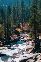 Stream In Sequoia National Park