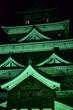 Leinwanddruck Bild - 広島城ライトアップ