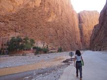 A Woman Walking Near A Brown S...