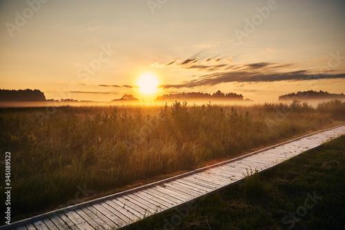 Fototapeta Wschód słońca nad terenem podmokłym obraz