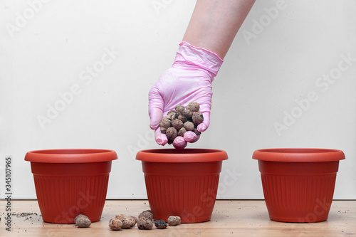 gloved hand layers expanded clay aggregate drainage in pots for transplanting ho Canvas Print
