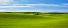 Panoramique Tapis Vallonné De...