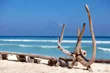 Tropical Beach With Dry Wood, ...