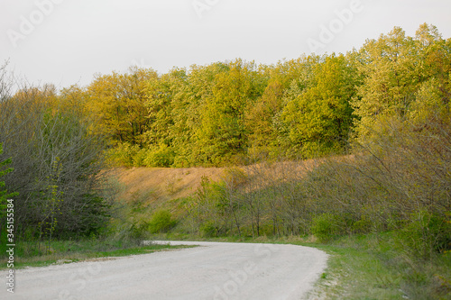 Fototapety, obrazy: spring, nature and the country road
