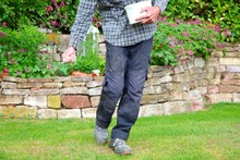 One Man Farmer Is Fertilizing The Lawn Soil. Male Hand Of Worker,  Fertilizer For Lawns In Springtime For The Perfect Lawn. Organic Lawn Fertilizer In Man's Hand On Garden Background.