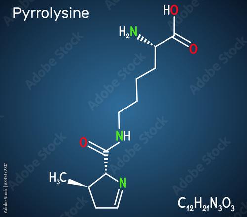 Pyrrolysine, l-pyrrolysine, Pyl, C12H21N3O3 molecule Wallpaper Mural