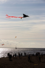 Silhouette Of People At The Beach, Flying Kites And Sail Yacht At Sea At The Background