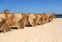 Palm Solar Umbrellas On The Be...