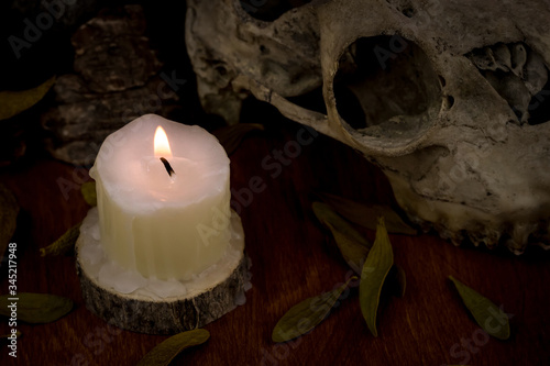 Photo Dark esoteric still life: candle on a wooden base burns , next to it is goat sku