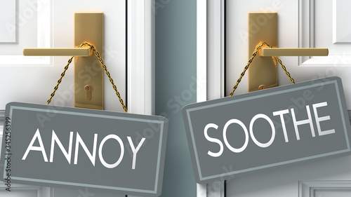 soothe or annoy as a choice in life - pictured as words annoy, soothe on doors t Wallpaper Mural