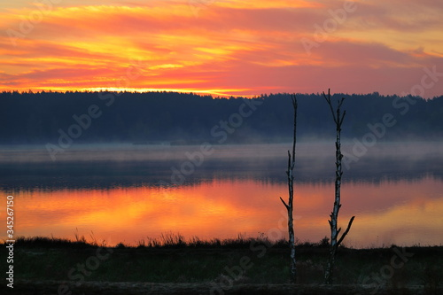 Fototapeta Wschód słońca nad lasem obraz