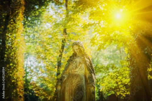 Obraz Ancient stone statue of Virgin Mary against beautiful landscape of forest in sunlight. - fototapety do salonu