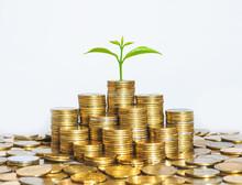 Coin Stack Money Saving Concep...