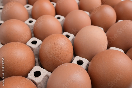 Fototapety, obrazy: fresh organic egg in paper panel of consume industry