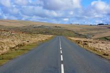 Empty Road In A Summer Landsca...