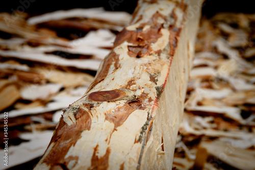 Valokuva Woodchips