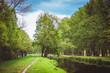 Wald Fluss Spreewald