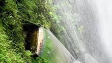 Beautiful Waterfalls With Vege...