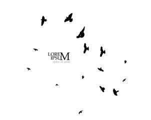 A flock of flying birds silhouette. Vector illustration