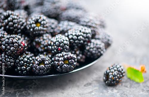 Blackberry closeup Canvas Print