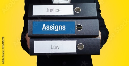Assigns – Lawyer carries a stack of 3 file folders Canvas Print