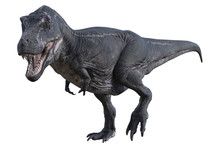 Large Tyrannosaurus Rex Dinosa...