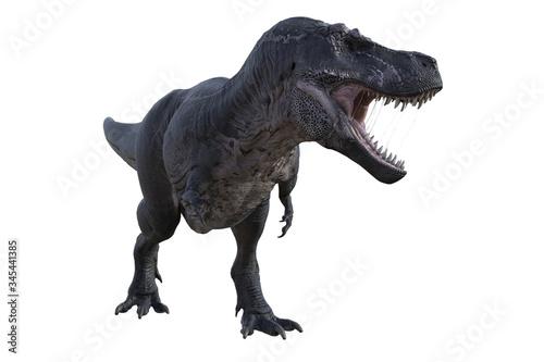 Fotomural Large Tyrannosaurus Rex dinosaur isolated on white, 3d render.
