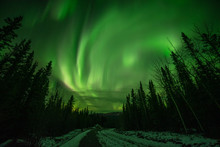 Astonishing, Amazing Northern Lights Aurora Borealis Seen In Yukon Territory, Northern Canada In Fall Autumn. Road With Trees, Woods And Green Sky.