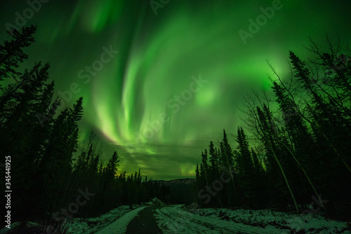 Obraz na plátně Astonishing, amazing northern lights aurora borealis seen in Yukon Territory, northern Canada in fall autumn