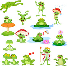Cartoon Funny Frog Collection Set